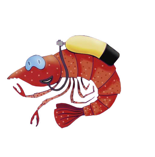 Palamós Dive Center